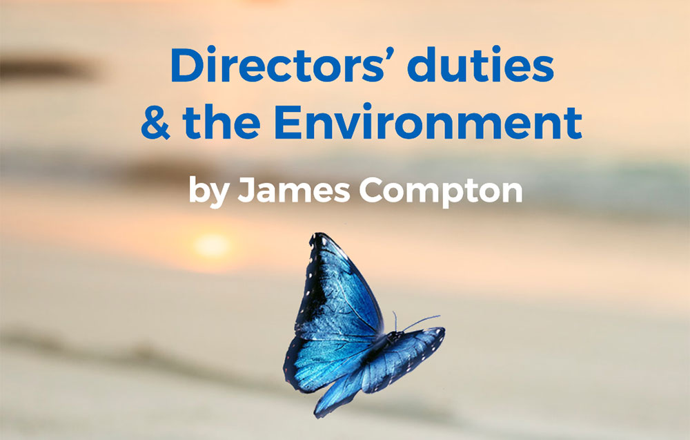 Directors' Duties and the Environment